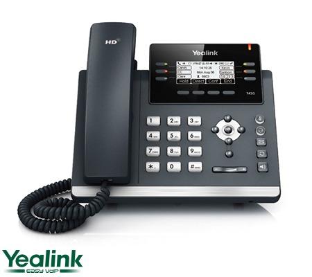 T42G - Teléfono IP